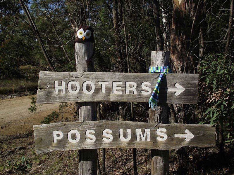 Possum's Hollow & Hooter's Hut
